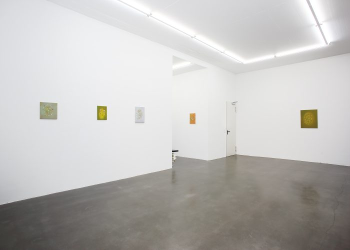 Yuji Nagai, cats whiskers, installation view 2