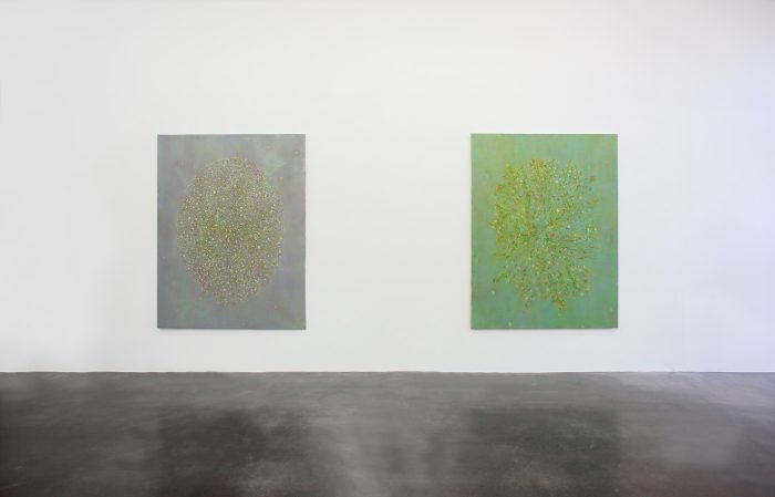Yuji Nagai, cats whiskers, installation view 4